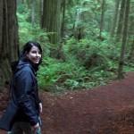Treelines Video Screen Shot