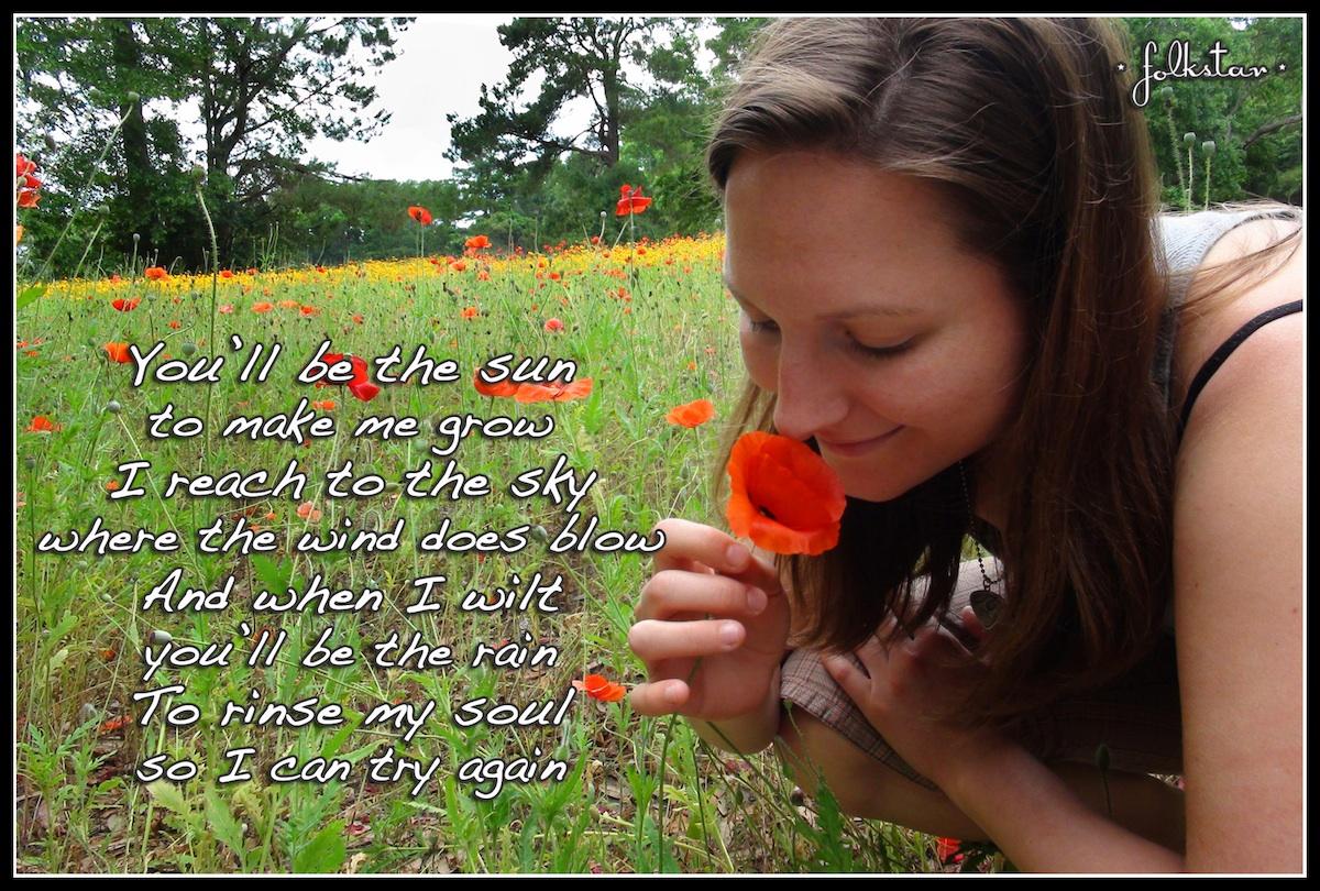 Poppies Folkstar Snapshot